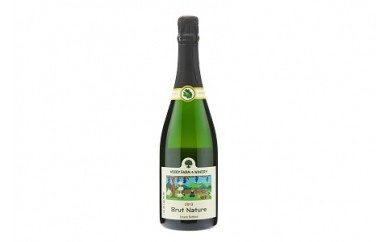 0062-007 スパークリングワイン1本【ブリュット・ナチュール2013】