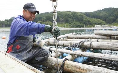 牡蠣のガンガン焼きと海の幸セット【11月後半~5月前半発送】
