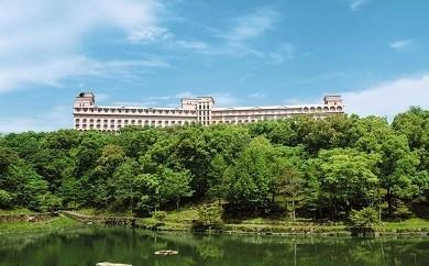 J03-1 ホテルセキア ペアランチセット(温泉利用特典付き)