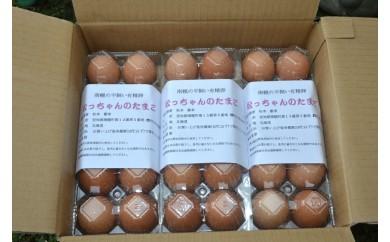 AI-22.松っちゃんの卵 南幌産平飼い有精卵 60個