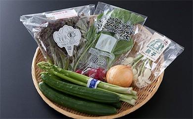 A5-20 【野菜ソムリエセレクト】旬の野菜果物セット1~2人用