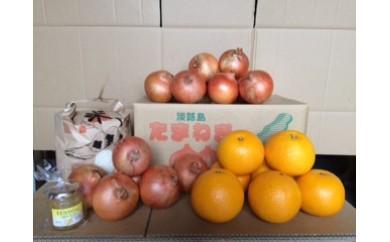 い-13 淡路島特産季節の農園セット②