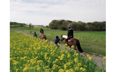 30-171 乗馬散歩「花さじき散歩」割引券