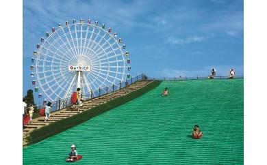 30-170 淡路ワールドパークONOKORO園内共通利用券