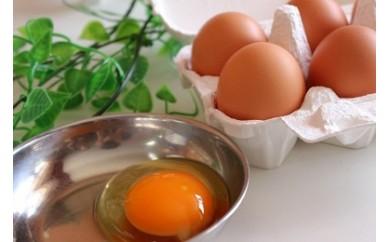 [№5707-0184]朝採れ卵を直送!こだわりが詰まった・・・夢の卵かけセット