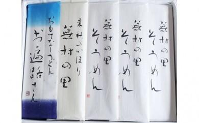 [№5802-0288]本場結城うどんプレミアム詰合せセット 夏セット