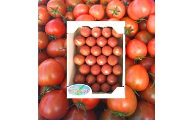 30-093 三谷さんの淡路島グルメトマト(1㎏)