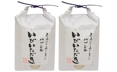 [№5905-0071]JAいび川プレミアム米「いびいただき」/白米5kg×2袋