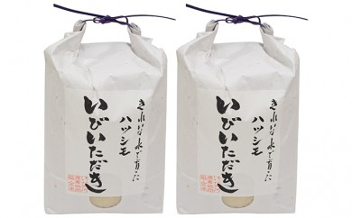 [№5905-0068]JAいび川プレミアム米「いびいただき」/白米3kg×2袋