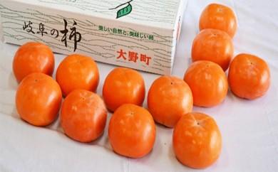 [№5905-0064]大野町産贈答用富有柿14個
