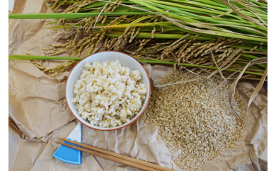 仁淀ブルーの恵み「おち米」(玄米)20kg