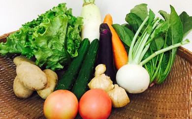 [№5772-0074]熊本県産 旬の野菜セット 年10回頒布会