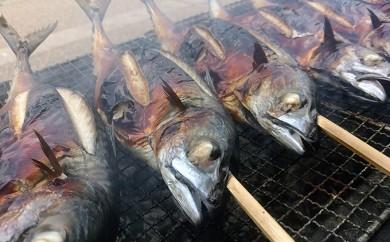 [№5892-0067]こだわりの炭火焼 鯖の丸焼き 3匹