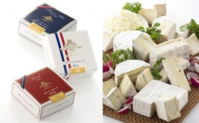 [№5794-0061]【クレイル特製】・カマンベールチーズ3種セット