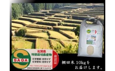 d-3 佐賀県特別栽培・棚田米夢しずく(玄米変更可) 栽培期間中 農薬・化学肥料不使用