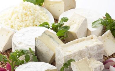 [№5794-0065]【クレイル特製】・カマンベールチーズ&粉雪セット