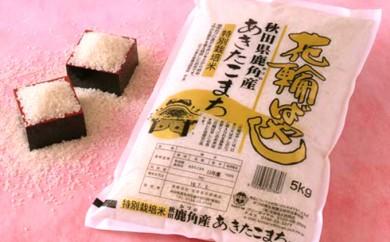 [№5764-0260]29年産特栽米食べ比べセット