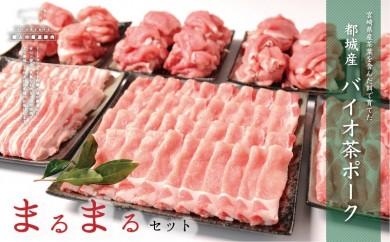 MA-3601_都城産「バイオ茶ポーク」まるまる4kgセット