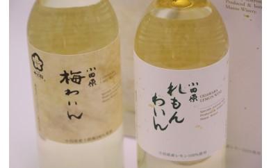 [№5691-0369]城下町小田原の飲み比べわいんAセット(2本セット)