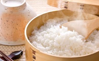 [№5641-0390]29年度米 清米(ななつぼし)