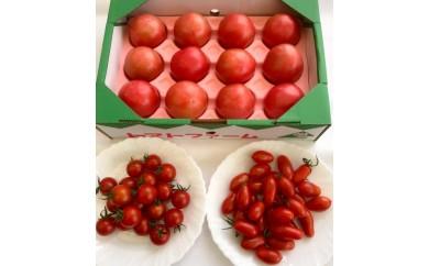 A-04日田のトマト