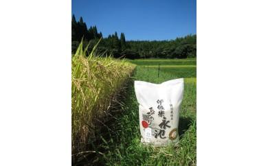 AA-2 特別栽培 伊佐米 永池 5kg