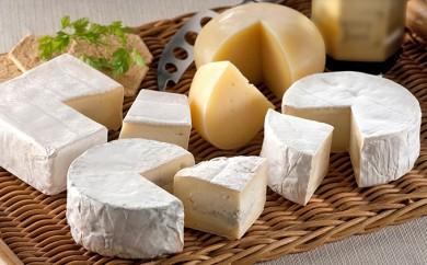 [№5794-0063]【クレイル特製】・カマンベールチーズ3種贅沢セット