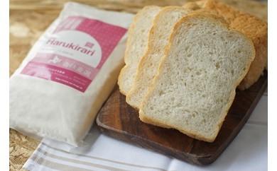 【W010】パン用小麦粉「はるきらり」5㎏