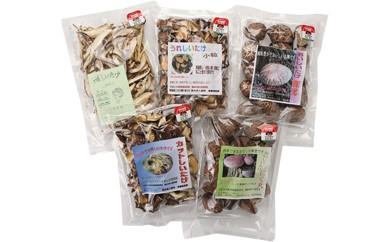 [№5636-0098]原木栽培椎茸 5種詰め合わせ
