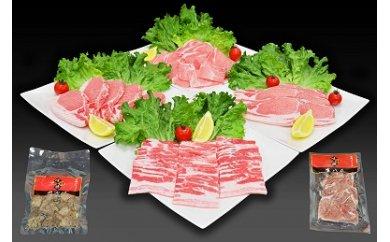2301001 宮崎県木城町産「味彩豚」お得で便利なバラエティセット