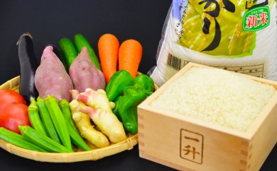 (お試し3ヶ月連続お届け)とれたて新鮮!旬の朝採れ野菜と高知県産コシヒカリ5kgのセット