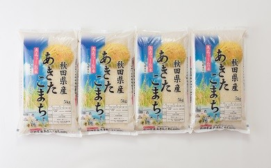 100P3002 秋田県産あきたこまち20kg【100P】