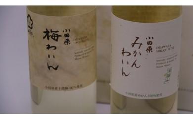 [№5691-0370]城下町小田原の飲み比べわいんBセット(2本セット)