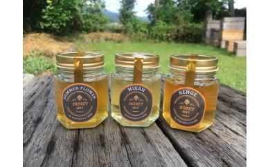 [№5691-0391]農家が養蜂!小田原で採れた生のハチミツ3種セット