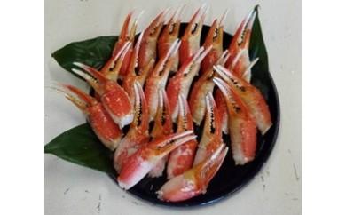 【B023】魚市場厳選 ずわいがに爪 1㎏