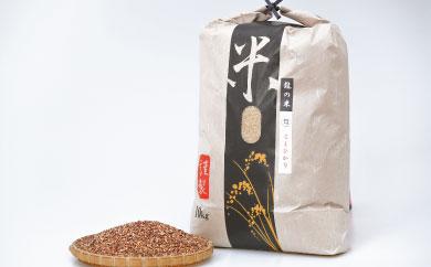 C-72 佐賀県産米「龍の米 コシヒカリ(玄米)」 10kg&「希少もち麦」 1kg【500セット限定!!】