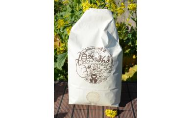 【B28】 自然のまんま(千葉県館山産コシヒカリ)5kg×2回送付