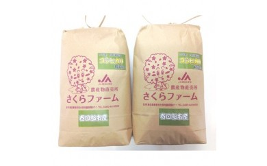 <平成29年産>春日部市産 特別栽培米 コシヒカリ 白米5kg×2袋【1025379】