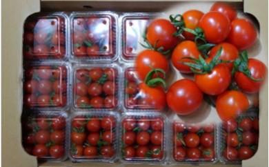 627 丸山さんが選ぶミニトマト 3.0kg