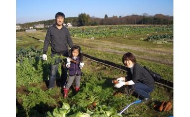 P-1 会員制貸農園「カズサ愛彩ガーデンファーム(5坪タイプ)」年間会員権