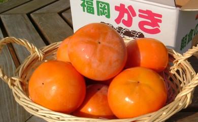 [№5656-0284]朝倉産 富有柿 5kg 【朝倉りんご園】