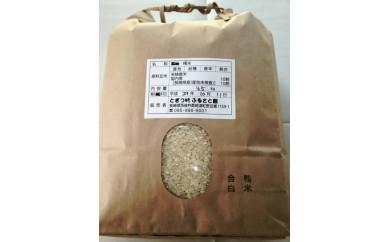 合鴨有機栽培米 長崎県産