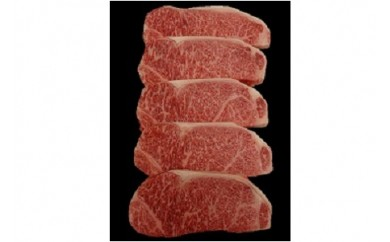 0002-015 山形牛焼肉セット 焼肉のタレ付き