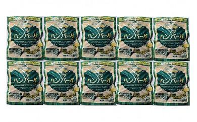 0002-006 国産牛ソースハンバーグ(10パック)