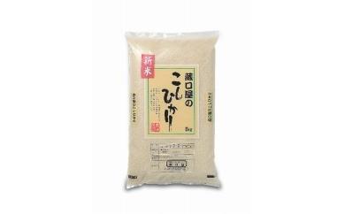 【新米】こしひかり5kg(精米)