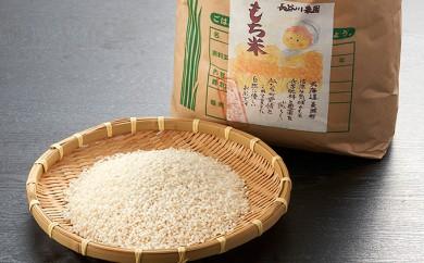 [№5894-0066]北海道産特別栽培米「風の子もち」5kg×1