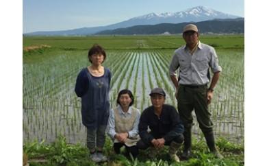 NB355 平成29年産米 有機栽培米 コシヒカリ5kg