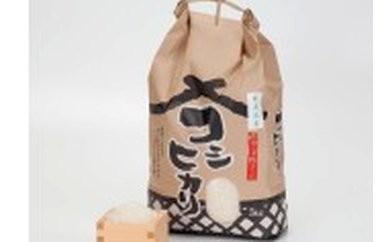 G1 こだわりの新見庄米 5kg 1袋