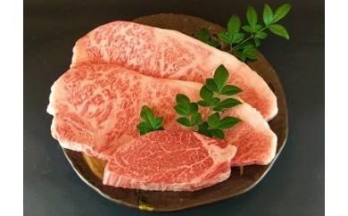 【3枚セット!! 在庫限り!】宮崎牛ロース・ヒレステーキセット(冷蔵) G-10