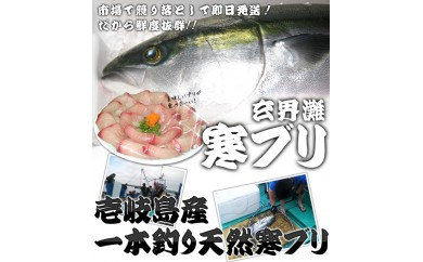 061-08壱岐島産天然寒ブリ(7キロ台・半身ブロック)  12,900pt